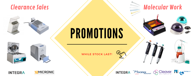 Year end promotion 2019