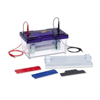 Vertical Electrophoresis Sys